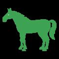 caballoicon
